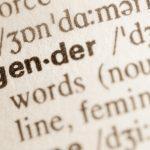 Die Österreichische Schule und das generische Femininum